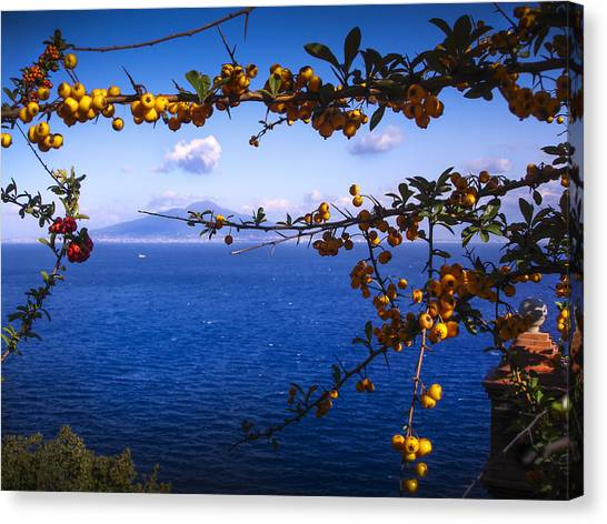 Mount Vesuvius From Sorrento Canvas Print