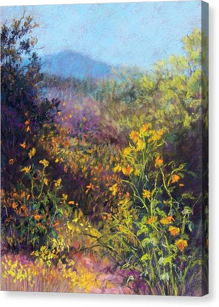 Mountain Beauty Canvas Print by Candy Mayer