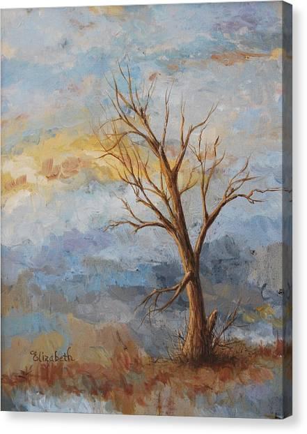 Mountain Blues Canvas Print by Beth Maddox
