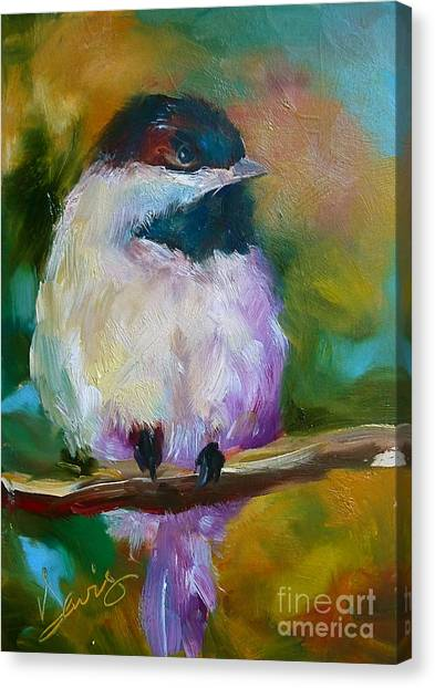Mountain Chickadee Canvas Print by Xx X