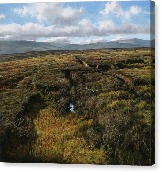 Mountain Heather Canvas Print by Eugene Conway