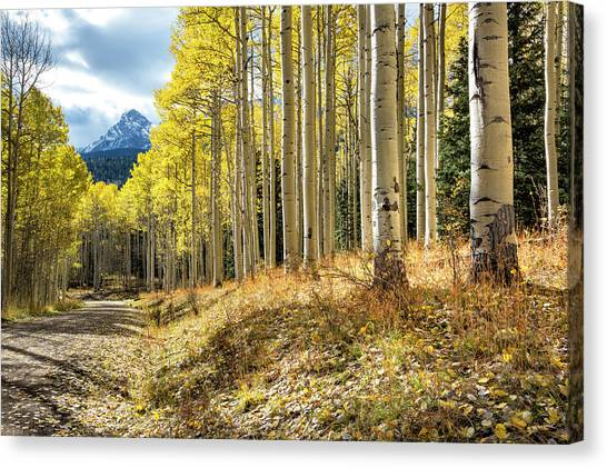 Canvas Print featuring the photograph Mountain Highlights by Denise Bush