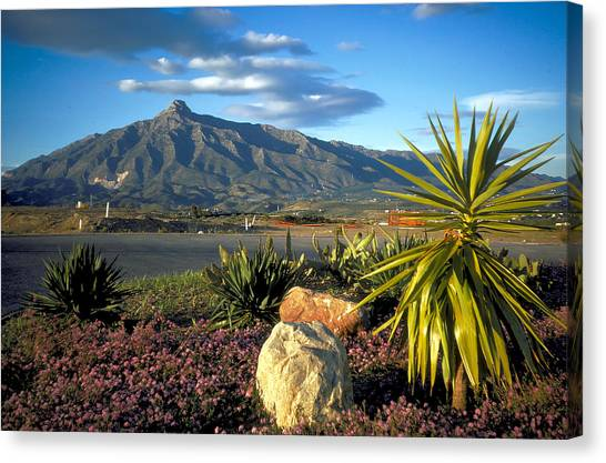 Mountain In Marbella Canvas Print by Carl Purcell