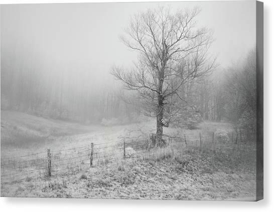 Mountain Mist Canvas Print