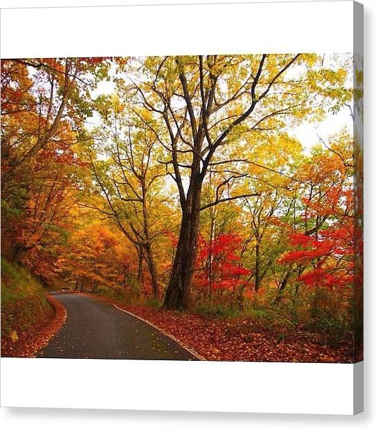Japanese Canvas Print - #mountain #nature #japan #wu_japan by Moto Moto