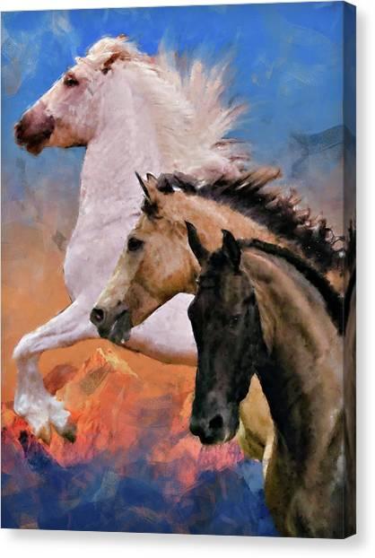 Mountain Ridge Royalty Canvas Print
