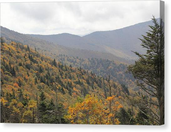Mountain Side Long View Canvas Print