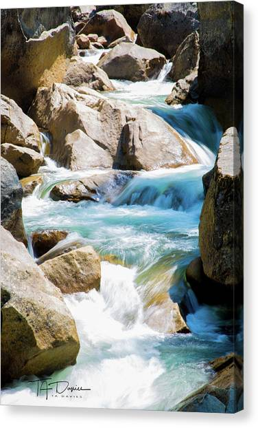Mountain Spring Water Canvas Print
