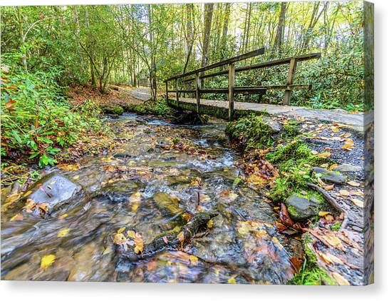 Mountain Stream #2 Canvas Print