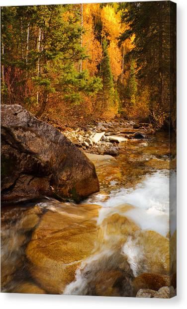 Mountain Stream In Autumn Canvas Print