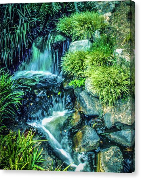 Canvas Print featuring the photograph Mountain Stream by Samuel M Purvis III