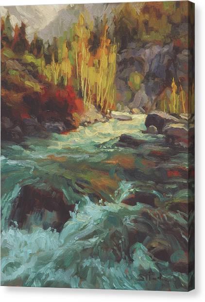 Mountain West Canvas Print - Mountain Stream by Steve Henderson