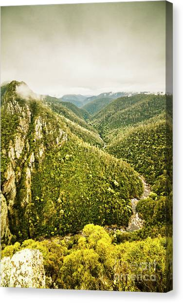 Rain Forest Canvas Print - Mountain Streams by Jorgo Photography - Wall Art Gallery