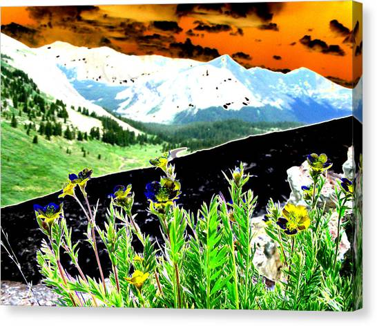 Mountain Summer Canvas Print by Peter  McIntosh