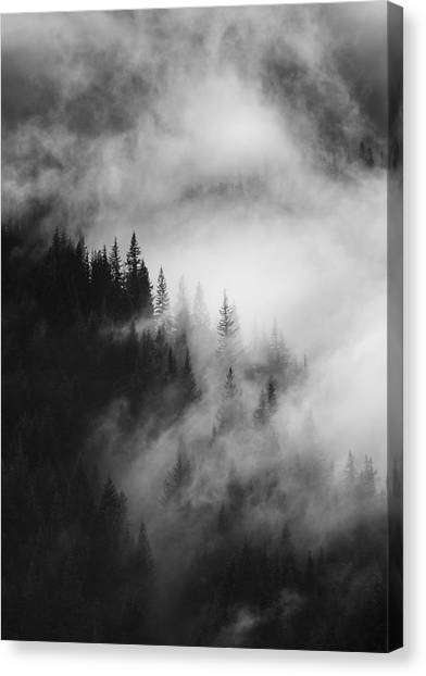 Forest Canvas Print - Mountain Whispers by Mike  Dawson