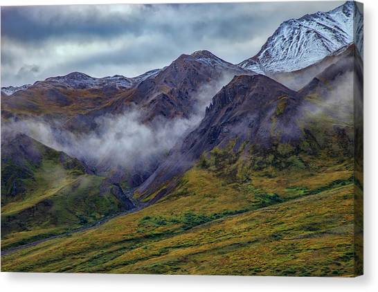 Denali Canvas Print - Mountains In The Mist by Rick Berk