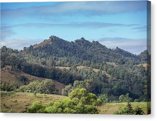 Wine Country Canvas Print - Mountains Of The Hunter by Az Jackson
