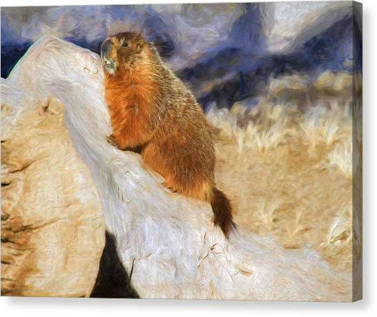 Groundhogs Canvas Print - Mountains To Climb by Donna Kennedy