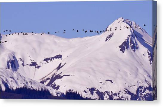 Mountaintop Geese II Canvas Print