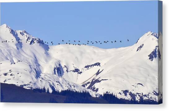 Mountaintop Geese Canvas Print