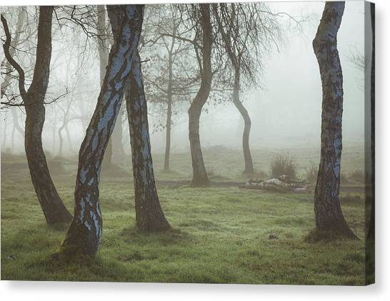 Sherwood Forest Canvas Print - Mourning by Chris Dale