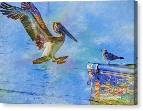 Move Over Canvas Print