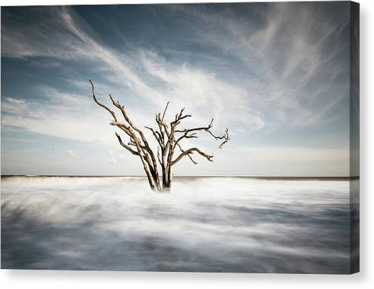 Bay Canvas Print - Movement by Ivo Kerssemakers