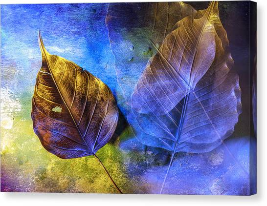Movement Of Time Canvas Print