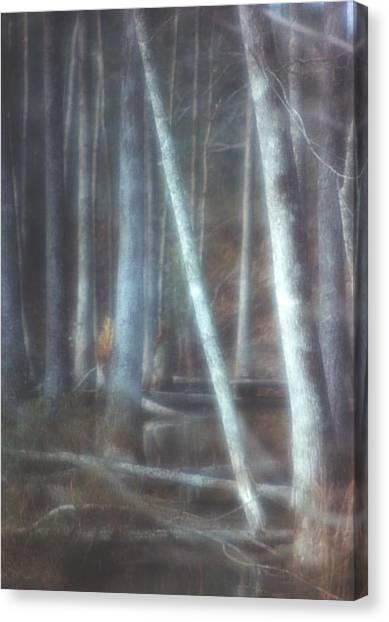Mprints -winter Beauty Canvas Print