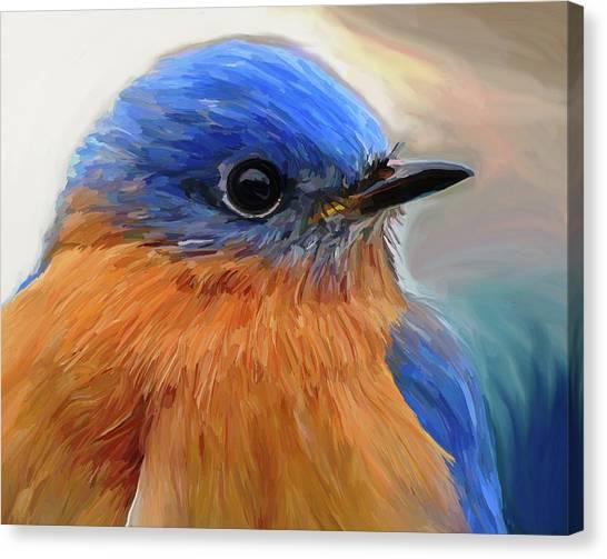 Bluebirds Canvas Print - Mr. Blue by Patti Siehien