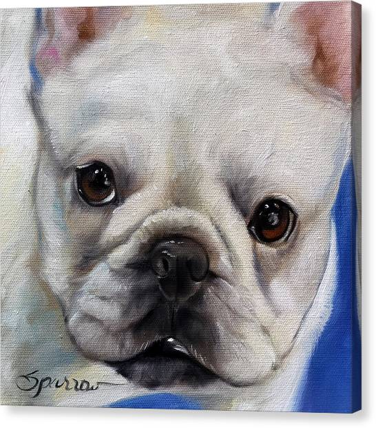 French Bull Dogs Canvas Print - Mr. French by Mary Sparrow