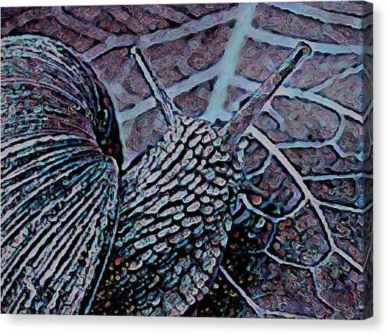 Canvas Print - Mr Snail On A Leaf by Modern Art