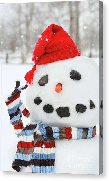 Mr. Snowman Canvas Print