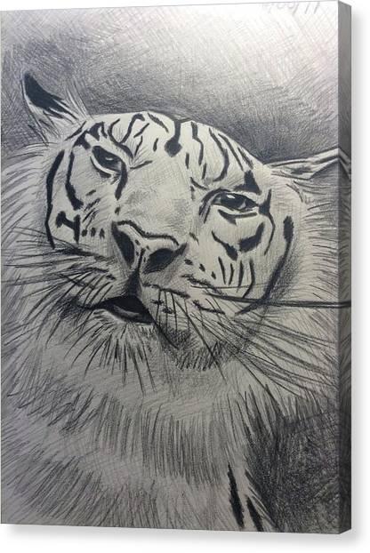 Mr Tiger Canvas Print by John DiMare