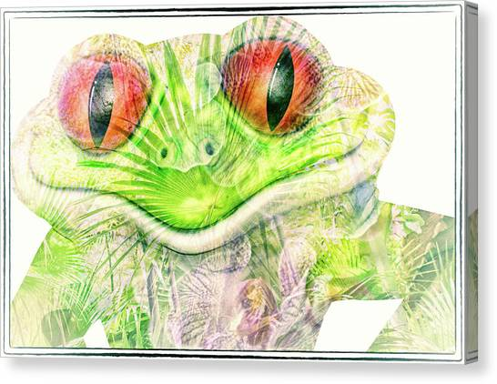 Mr Ribbit Canvas Print