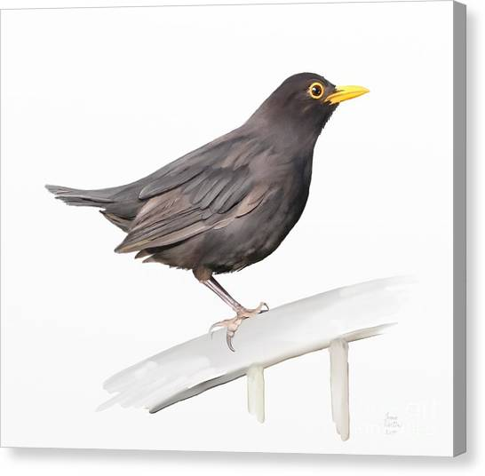 Canvas Print featuring the painting Ms. Blackbird Is Brown by Ivana Westin