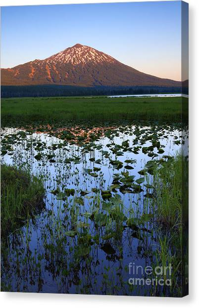 Bachelor Canvas Print - Mt. Bachelor Sunset by Mike Dawson
