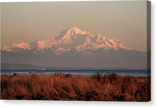 Mt Baker At Sunset Canvas Print