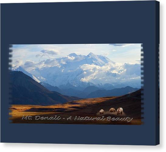 Mt. Denali National Park Canvas Print
