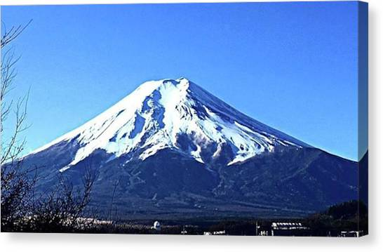 Bamboo Canvas Print - Mt by Take Bamboo