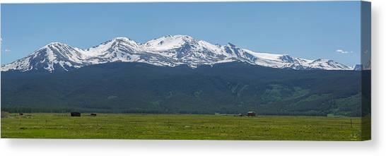 Mt. Massive Canvas Print - Mt. Massive - Spring by Aaron Spong