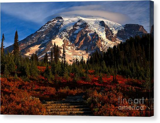 Mt. Rainier Paradise Morning Canvas Print