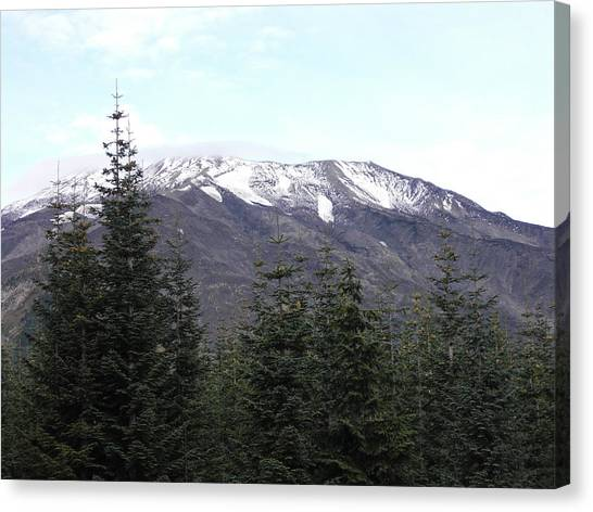 Mt. St. Helens Canvas Print by Mark Camp