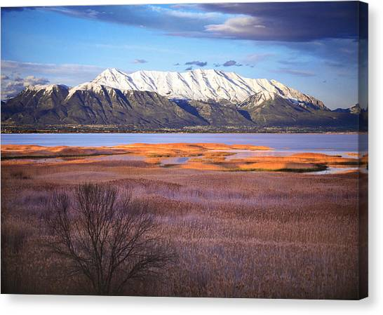 Wetlands Canvas Print - Mt. Timpanogos And Utah Lake by Douglas Pulsipher