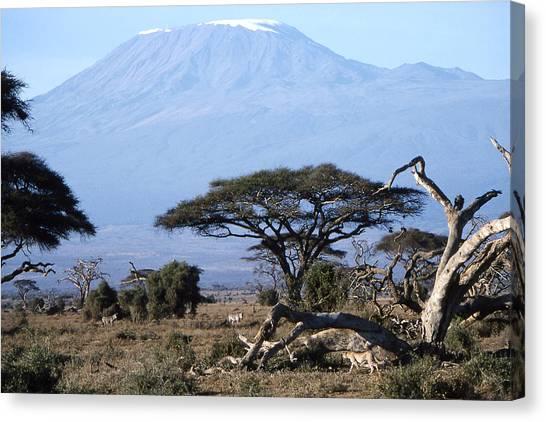 Mt.kilimanjaro Canvas Print by Wade Worsley