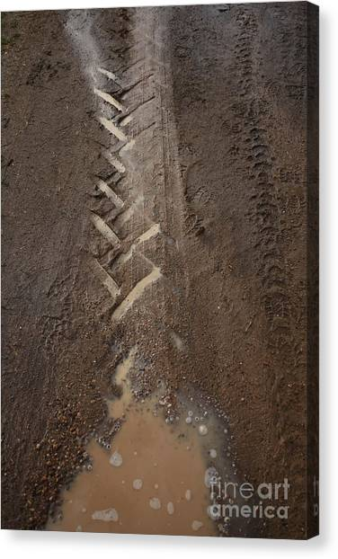 Canvas Print featuring the photograph Mud Escape by Stephen Mitchell