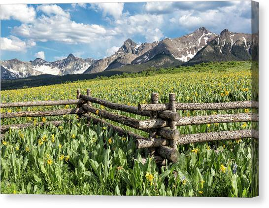 Canvas Print featuring the photograph Mule's Ears And Mountains by Denise Bush