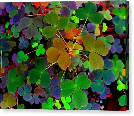 Multi-coloured Leaves Canvas Print