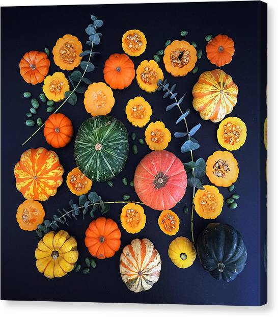 Multiple Squash Canvas Print