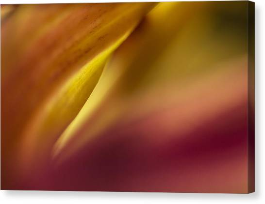 Mum Abstract Canvas Print